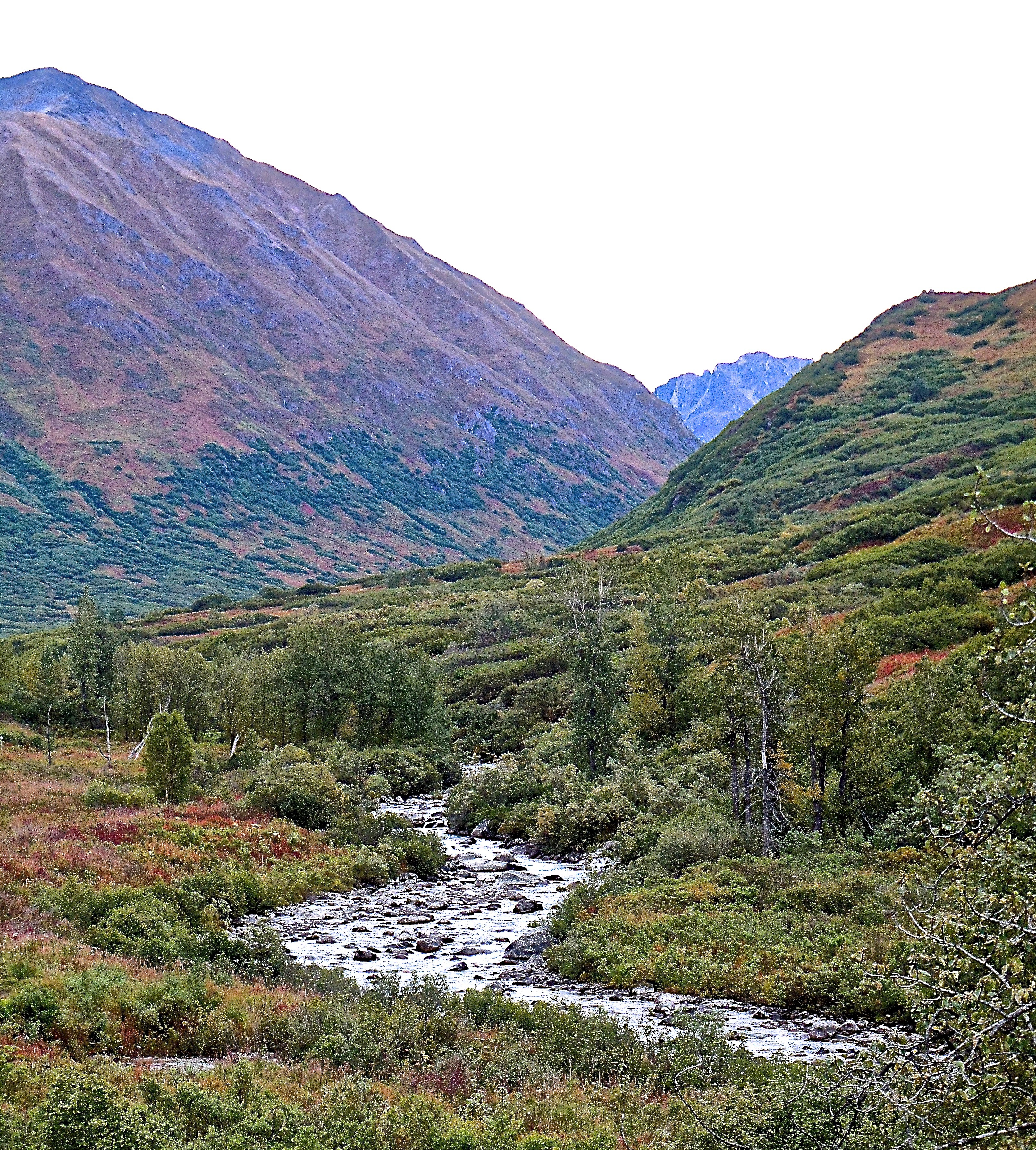 Hatcher Pass Little Su River by B. Winckler.
