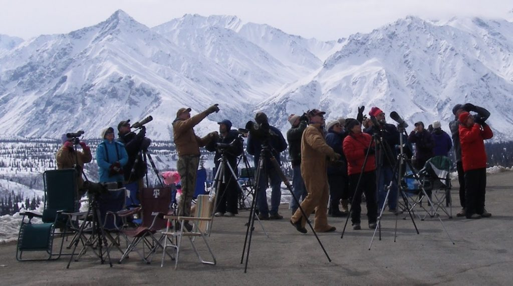 Birders at the annual Gunsight Mountain Hawkwatch. Photo by Bob Winckler