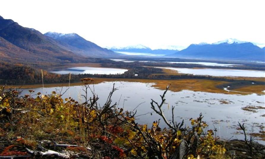 Jim-Swan Lakes