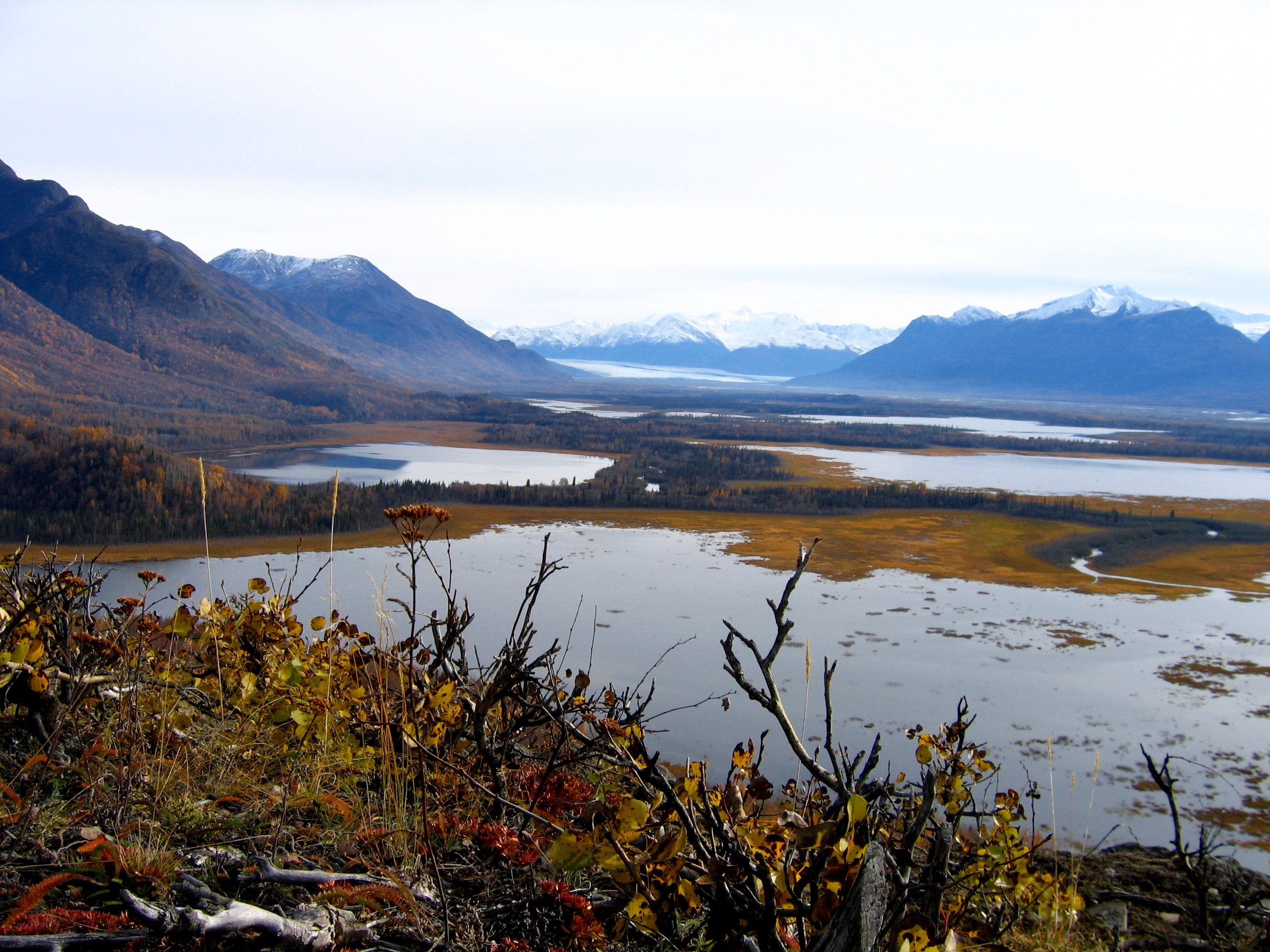 Mud Lake, Jim Lake, Gull Lake, Leaf Lake Swan Lake and Knik Glacier