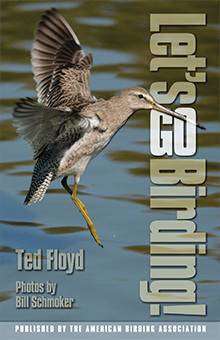 Let's Go Birding eBook